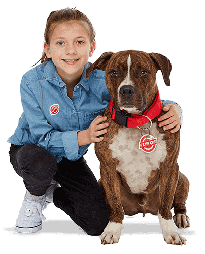 Protect your dogs and kids from pests